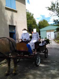 calèhe wagonnette 8 places à vendre