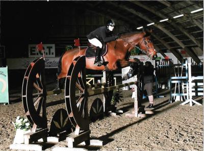 Vente cheval CSO AMATEUR