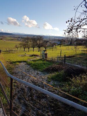 Pension chez particulier - Villars-le-Grand