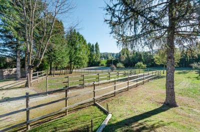 Propriété de 3 hectares, stabulation 4 chevaux