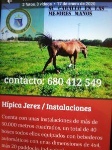 Hipica Jerez.    www.hipicajerez. es