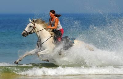 Randonnée à cheval de 1 à 6 jours Océan et Montagne