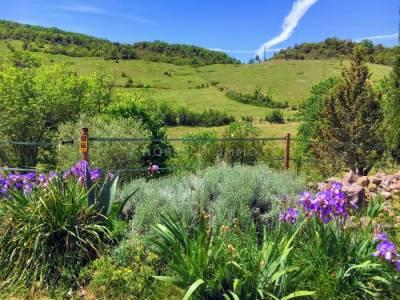 Agrotourisme équestre sur 60 hectares magnifiques