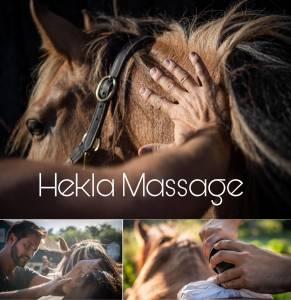 Hekla massage équin