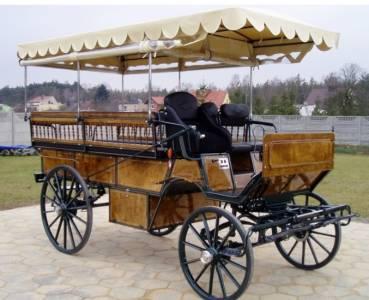 Wagonnette 12 places neuve bois