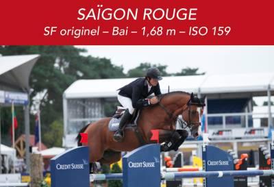 SAIGON ROUGE - SF originel – Bai – 1,68 m – ISO 159
