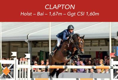CLAPTON - Holsteiner 1999 ,  CARETINO HOLST