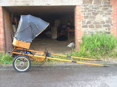 Carriage - Calèche