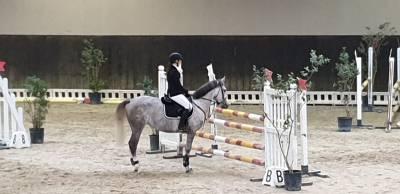 vendo doppio pony