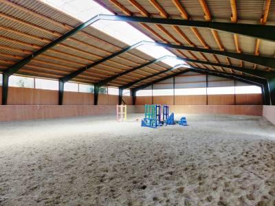 Haras d'élevage et de sport sur 34 hectares