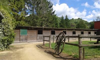 terrain avec structure equestre