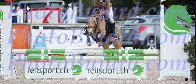 super poney de sport CSO