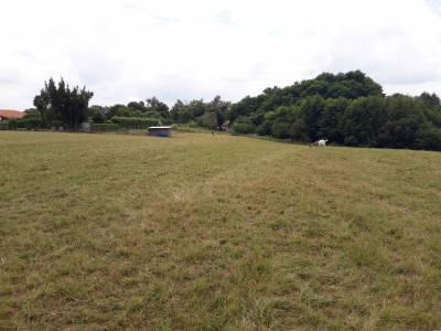 Petite propriété équestre sur 10 hectares