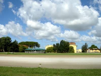 Centro di allenamento e allevamento cavalli da corsa