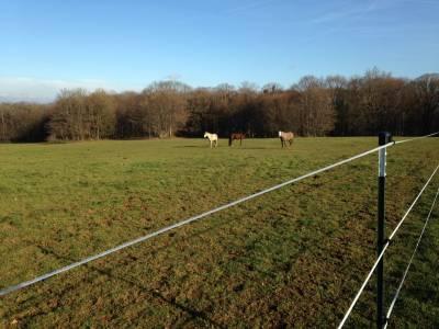 Magnifique ferme equestre (renové), 36 hectares clôturé