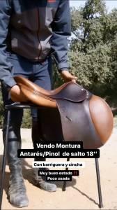 MONTURA SALTO+CINCHA+BARRIGUERA