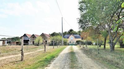 Propriété équestre sur 5.7 hectares à 25 min d'Angers