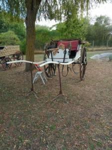Calèche  1860 deux roue faire prix