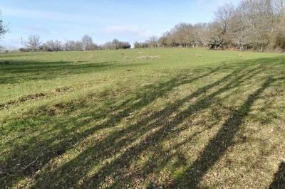 Terrain agricole 2 ha possible équestre