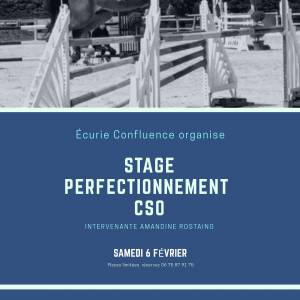 Stage perfectionnement CSO
