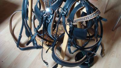 Carriage - Commercial carriage - Other brand -