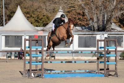 Belle jument coup de saut exceptionnel