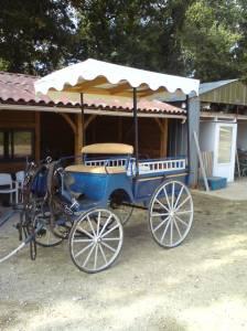 Rijtuigen - Wagonnette