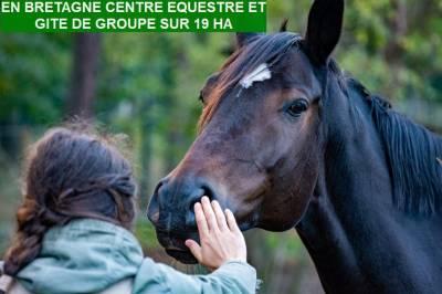 BRETAGNE CENTRE EQUESTRE ET GITE DE GROUPE SUR 19 HA