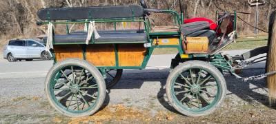 Calèche wagonnette 8 places