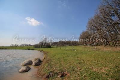 Propriété équestre 19 hectares - ALBI