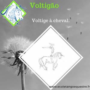 Stage de Voltige avec Voltigao