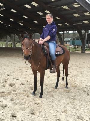 Jument quarter horse 3 ans