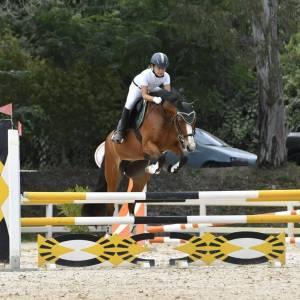 Pony 14 anni da salto ostacoli  e dressage