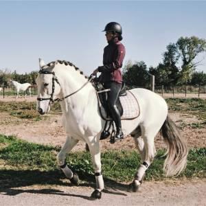 Cheval pure race espagnol