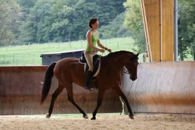 Enseignante équitation / dressage