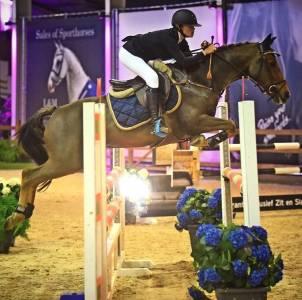 Super top spring dressage eventing d poney pil 148