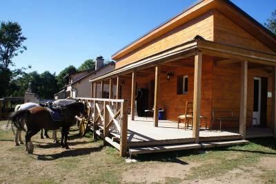 Monitor de equitación - Contrato fijo Tiempo completo - Alto Loira Francia