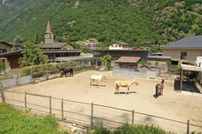 Charmante propriété éqjuestre en Valais