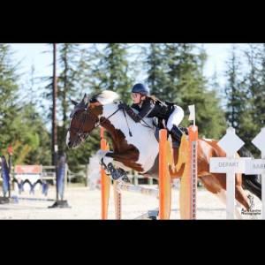 Vozépi de mancy cheval maître d'école