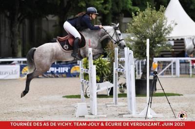 A vendre poney d classé as2