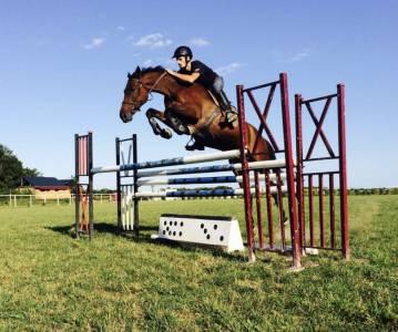 ECURIE DE MONCLEY - JDB SPORT HORSES