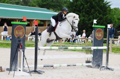 Poney d'experience a louer