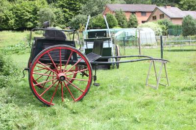 Carriage - Other carriage - Other brand - Tandem cart