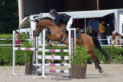 à vendre poney pour p elite as2d