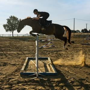 Super cheval de cso