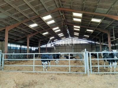 Bâtiments d'élevage avec 81 ha dont 30 ha irrigables - proche