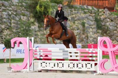 Jeune cheval de sport, 5ans, vagabond x papillon rouge