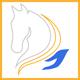 Massage-equin